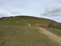 A photo of a path zig zagging up a hill on British Camp