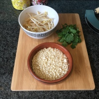 A photo of some of the ingredients: ean sprouts, crushed peanuts and fresh coriander