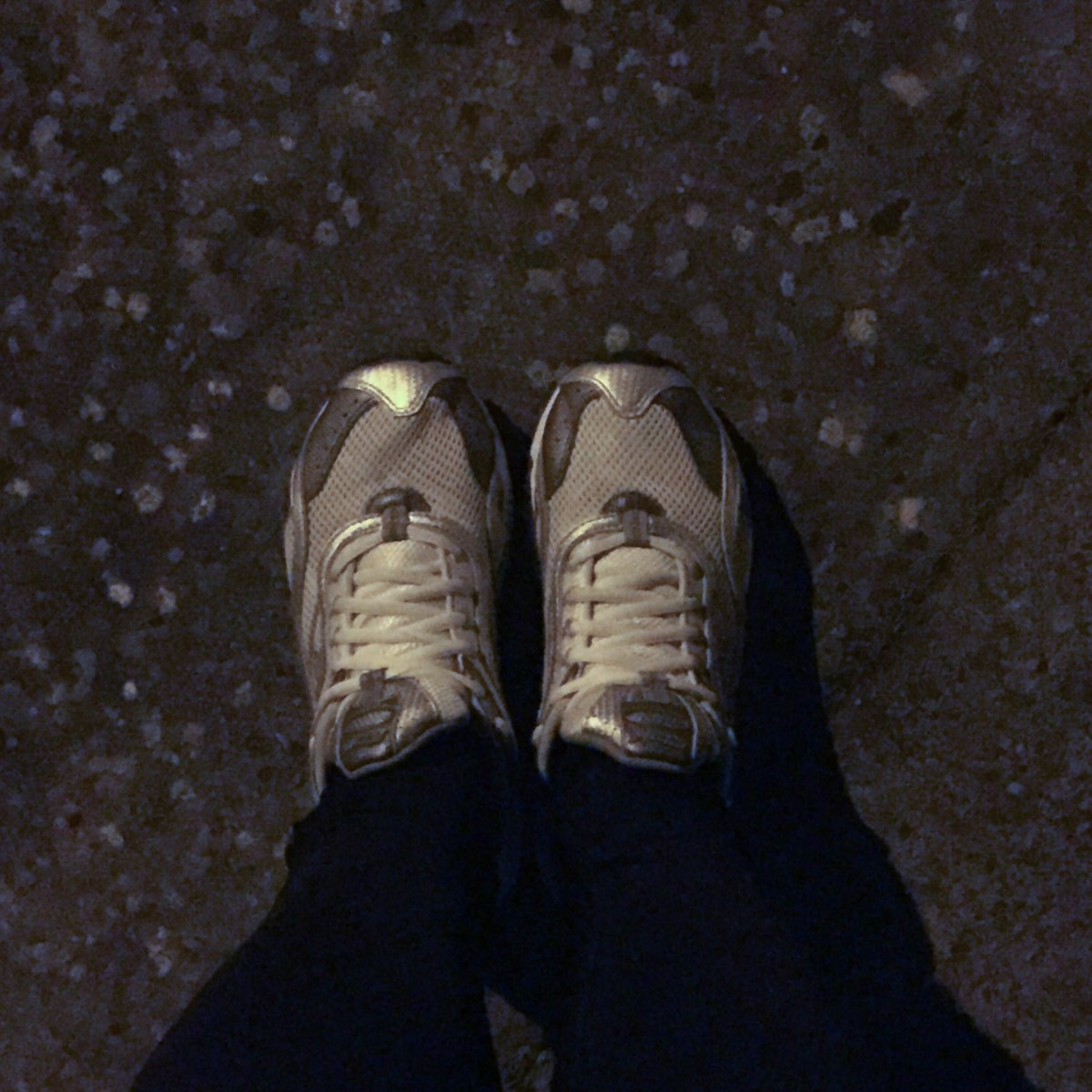 A photograph of Emma's 11-year-old trainers. They're so comfy that she can't buy new ones until these fall apart.