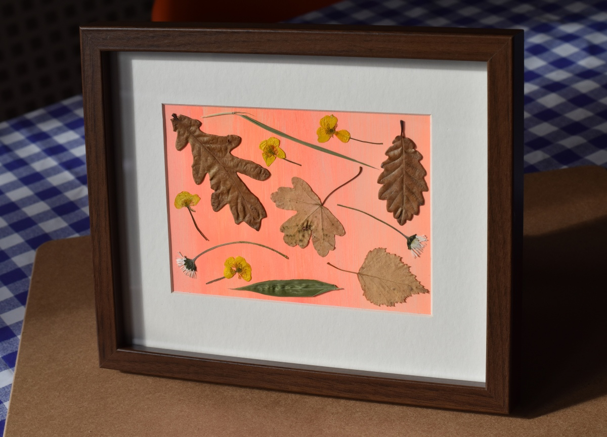A photograph of the finished framed flowers and leaves