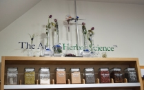 A photograph of a painted sign on the wall saying The Art of Herbal Science with some glass test tubes