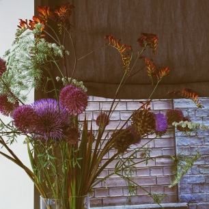 A photograph of the flowers in NOVI after Emma edited it during the workshop with the app VSCO