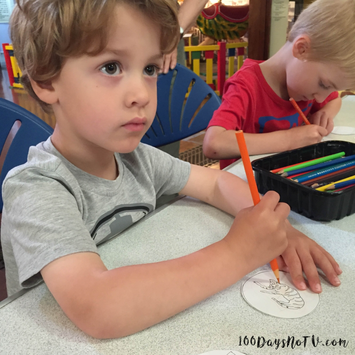 A photograph of Ben looking up during his colouring of the tiger.