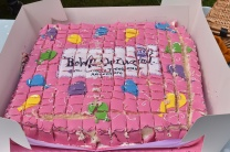 A photograph of the pink BeWILDerwood birthday cake all sliced up.