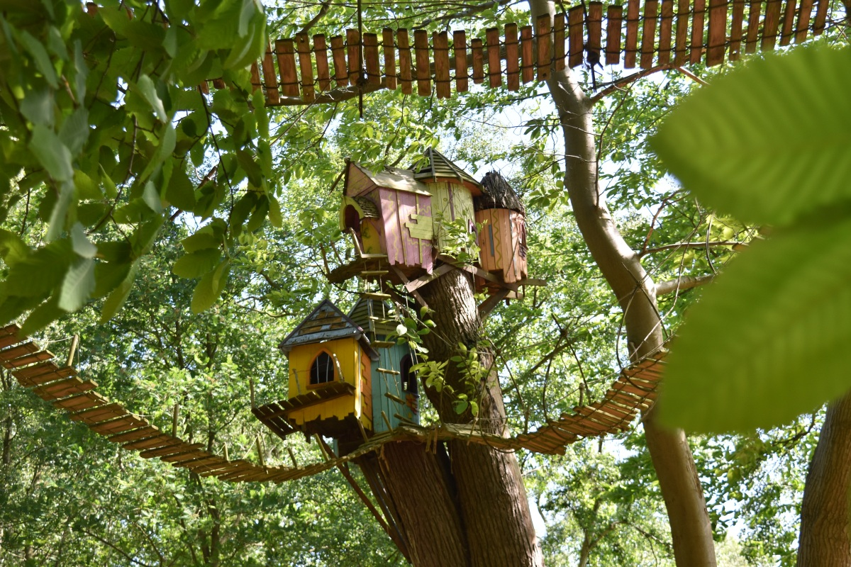A photograph of a group of four boggle treehouse.