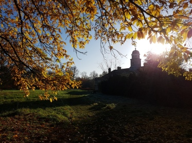 A photograph of Wandlebury Country Park in the autumn sunshine.