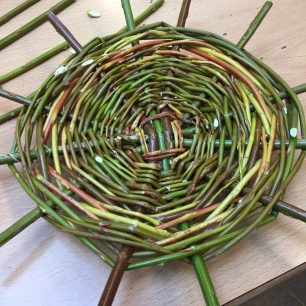 A photograph of the finished base with weaving up to about an inch from the end of the spokes.