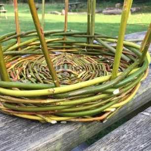 A close up photograph of the basket sides. Emma has weaved about 5cm.