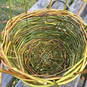 A view looking down into the basket. The sides are almost complete.