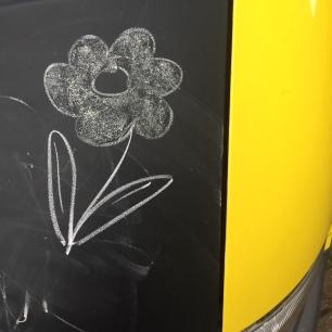 Chalk flower