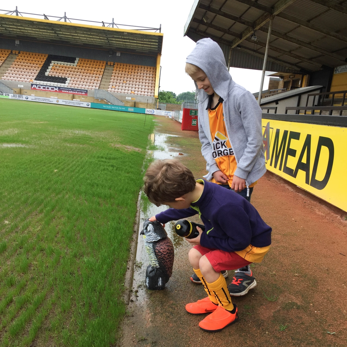 A photo of Ben and Ollie petting Nelson the plastic owl, used to scare birds off the newly seeded pitch