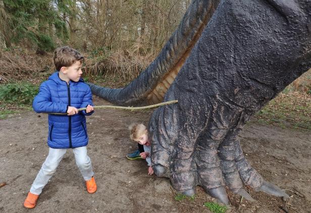 Fighting the brachosaurus